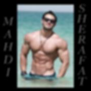 Mahdi_Sherafat.png