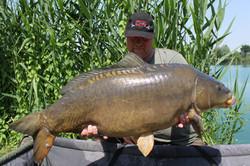 15kg northern baits