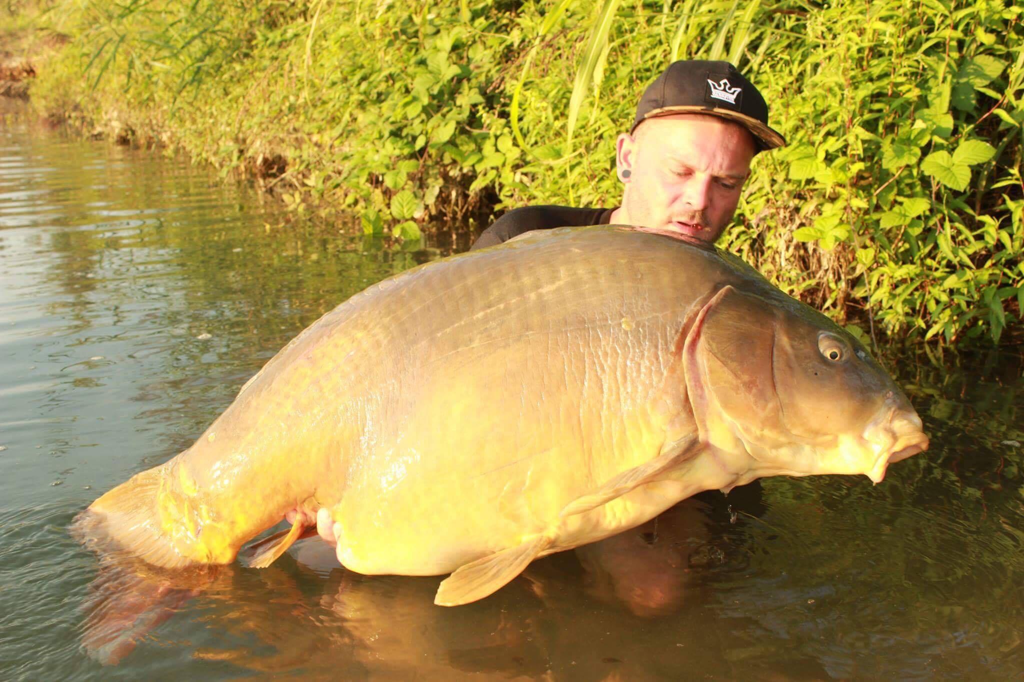 jerry fish august 2016 mit 29,9 kg