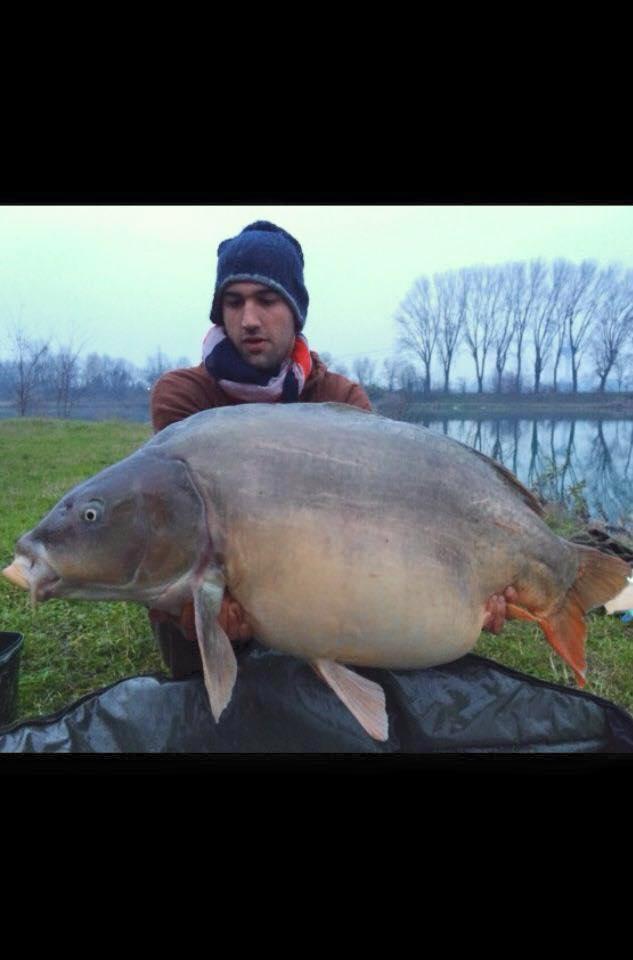 jerry fish februar 2016