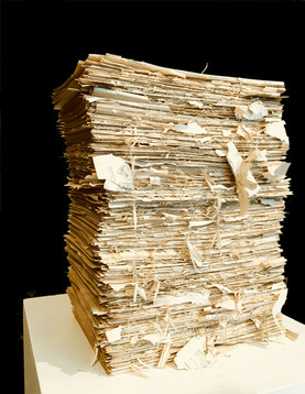 Century Cyclopedia Volumes I-IX