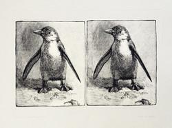 Cape Penguins (intaglio)