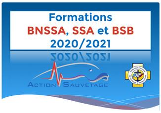 Récapitulatif Réunion BNSSA + Vidéo