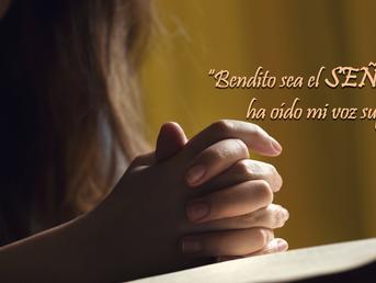 ¿Estás confiando en Dios en medio de la lucha?