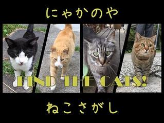 ねこさがし~Find the cats!
