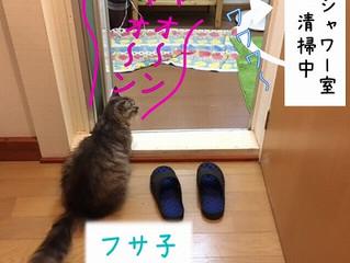 フ-サ-子- ナゼ鳴くの-?