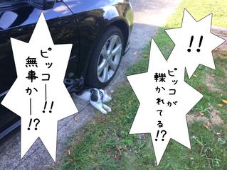車の下敷き!?