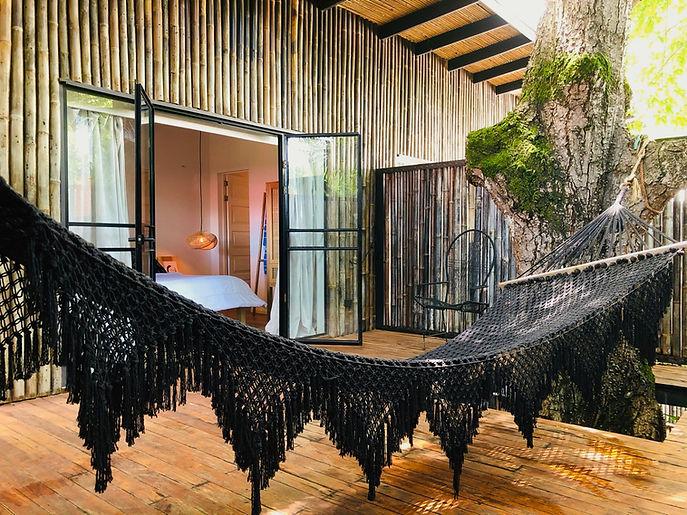Room 6 hammock front.jpg