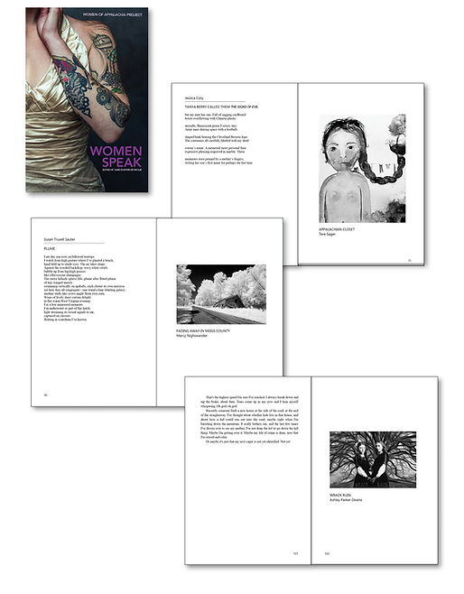 fine art anthology.jpg