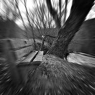 Kari_Gunter-Seymour06.jpg