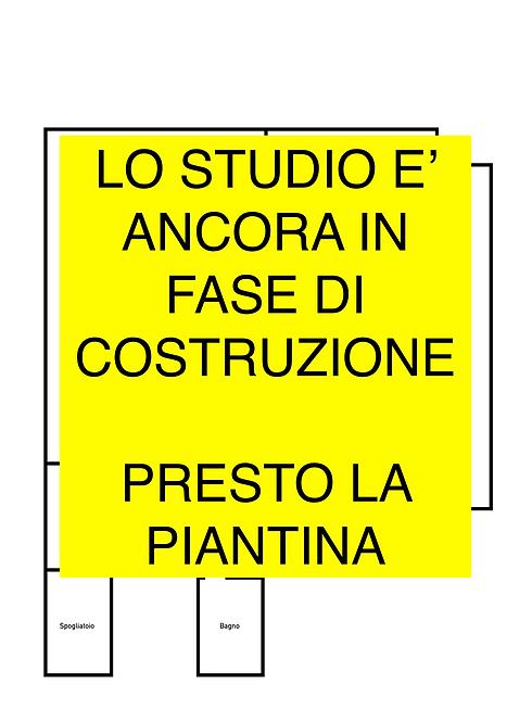 Piantina per Sito IN COSTRUZIONE.png