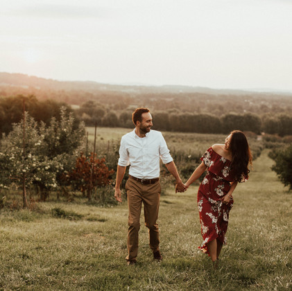 Surprise Vineyard Proposal