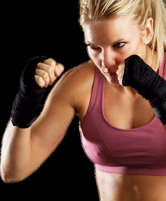 Boxer Model.png