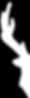Logo-Principium.png