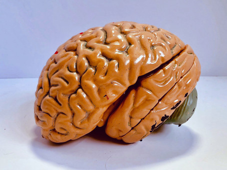 Can we talk about COVID-brain?