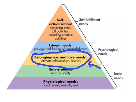 Maslow's hierarchy of needs focus on belongingness and love needs