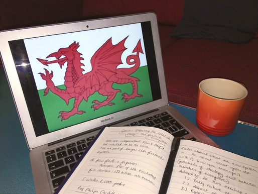 The extraordinary rise of Welsh FinTech