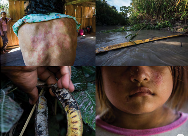 BNP Paribas and other banks are destroying the Amazon, leading to problems for local communities, Hannah Duncan Investment Content