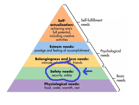 Maslow's hierarchy of needs focus on safety needs