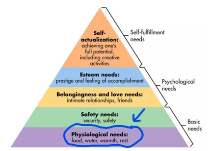 Maslow's hierarchy of needs focus on physiological needs
