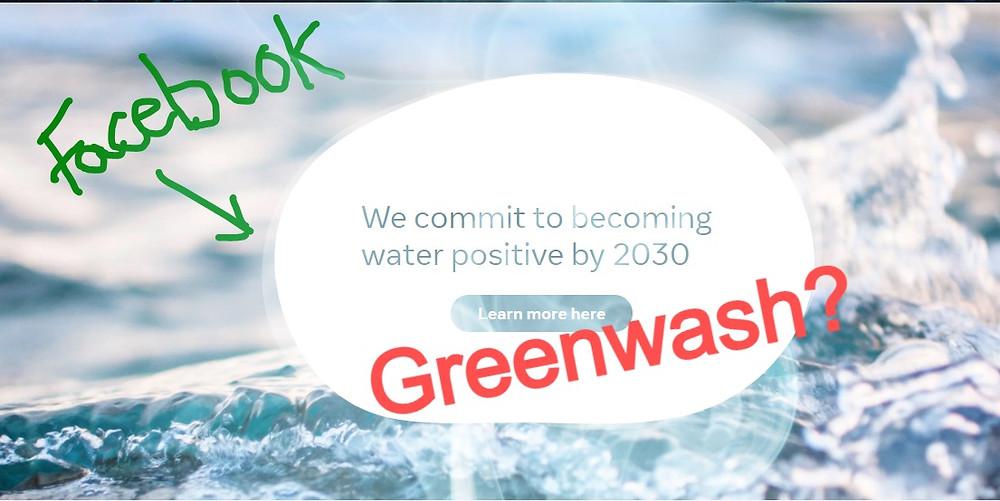 Facebook carbon neutral pledge greenwash Hannah Duncan Investment Content