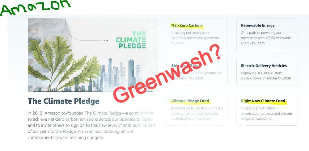 Amazon climate pledge greenwash Hannah Duncan Investment Content