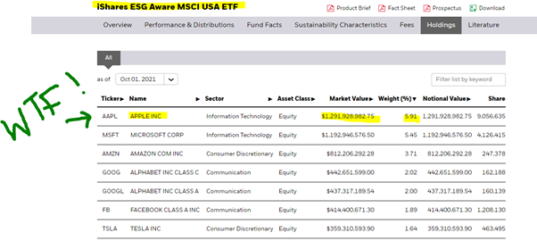chart showing the iShares ESG Aware MSCI USA ETF investment holdings Hannah Duncan Investment Content