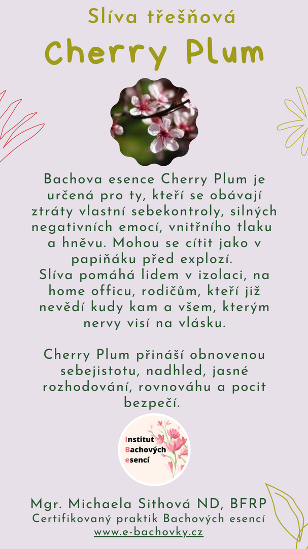 Cherry Plum.png
