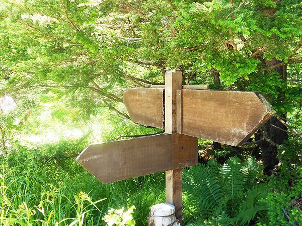 森の中にある道標