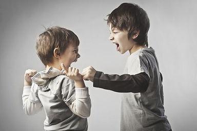 喧嘩する兄弟