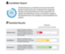 Candidate report_Candidate report page.J
