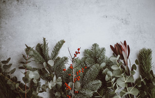 Warum Weihnachten als Single wie ein Besuch im Jobcenter ist