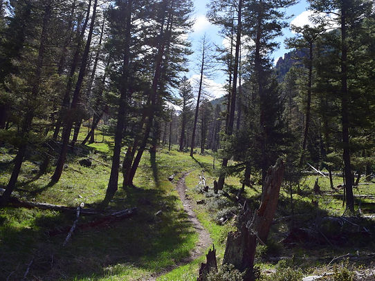 Hiking | West Yellowstone