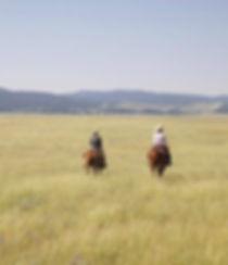 Horseback riding | Sheep Mountain Cabin
