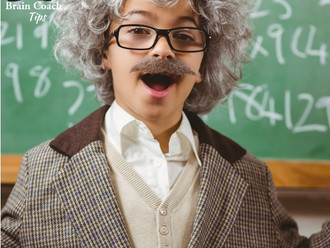 The Gifted Learner Pt.1- Engaging Einstein
