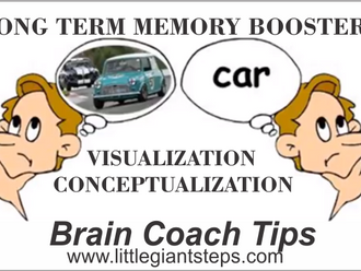 Long Term Memory Boosters