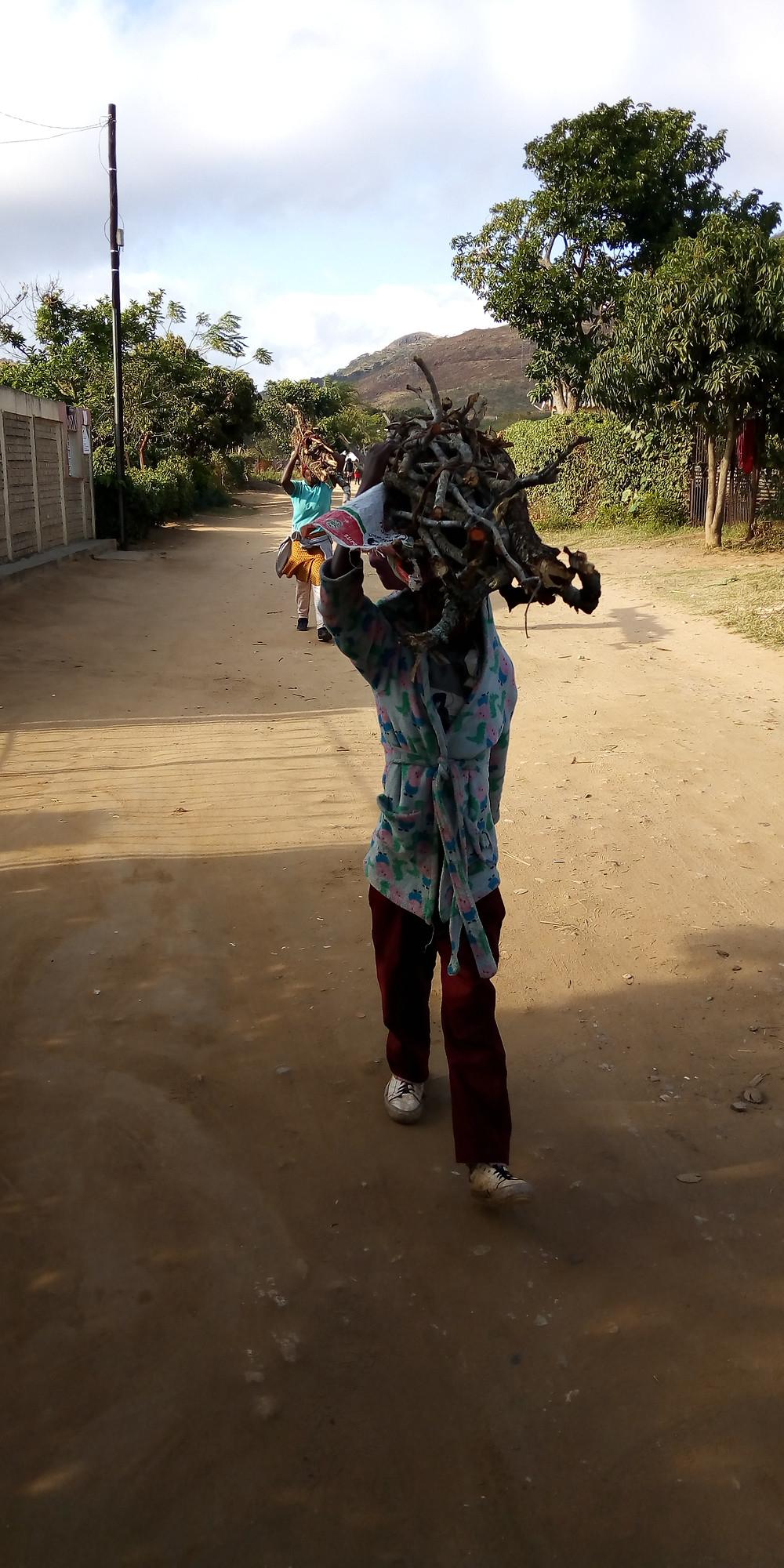 Zimbabwean children and women fetching firewood