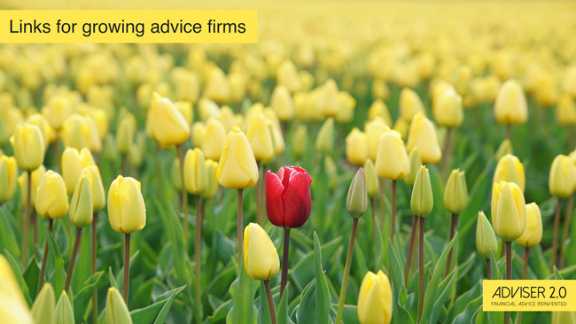 How advisers can identify the right niche for them