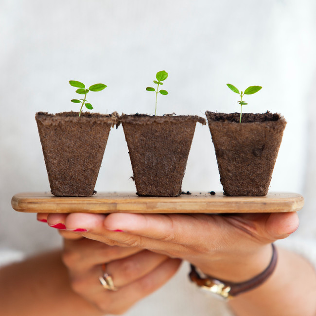 Links for growing advice firms