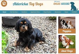 Aldoricka Toy Dogs