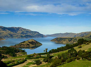 Private tours of Dunedin New Zealand.