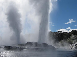 Dunedin Tours and sightseeing.
