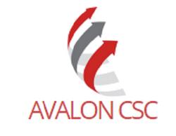 Avalon CSC 300 (002)