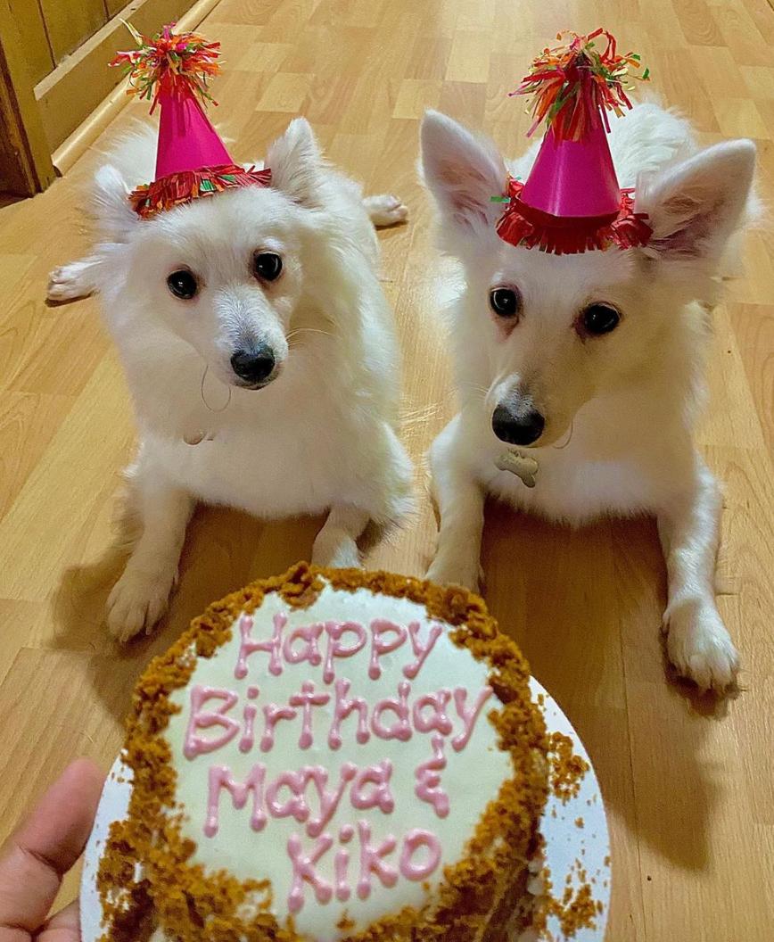 Maya and Kiko's Birthday