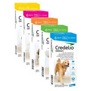 5580-CredelioTablets.jpg