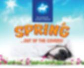 Spring2018.jpg
