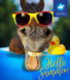 SAID-Summer.jpg