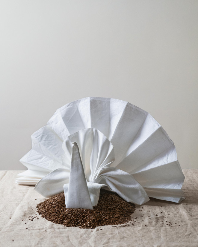 The Art of the Fold_peacock