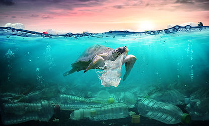 plastic packaging at the bottom of the ocean