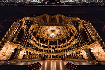 Exclusive private visite of the backstage of the world most famous opera houses